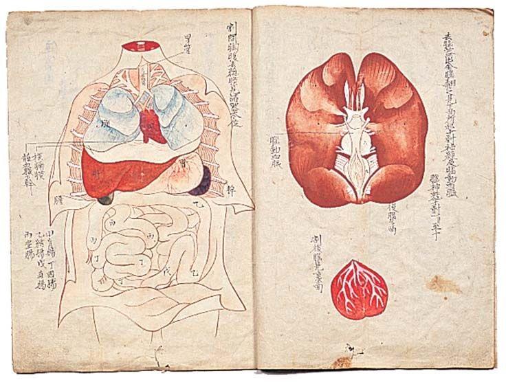 医史跡、医資料館探訪記8 壬生のヒポクラテスたち-医は仁術なり-展
